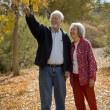 Stock Photo: Retired Couple Together