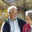 Senior elderly couple — Stock Photo #41592349