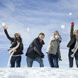 Stock Photo: Young adults snowball fighting