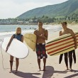 Stock Photo: Surfing buddies