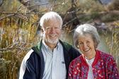 Senior Couple Smiling — Stock Photo
