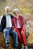 Senior Couple together — Stock Photo