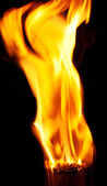 Burning matchsticks on black background — Stock Photo