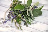 Herb Bouquet — Stock Photo