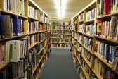 Bookshelves Full of Books inside of a Library — Stock Photo