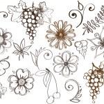 Set of design elements, flora — Stock Vector #33746877