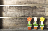 Flowers in a pot on wooden background — Stock Photo
