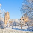Ely cathedral in sunny winter day — Stock Photo