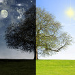 Day vs. night tree concept - Stock Photo
