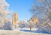 Ely cathedral in sunny winter day — Stok fotoğraf