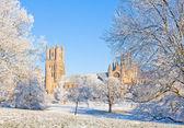 Güneşli kış günü katedralde ely — Stok fotoğraf