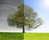 Rain vs Sun concept — Stock Photo