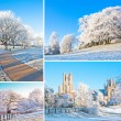 Set of winter compositions — Stock Photo