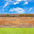 brick wall horizontal endless seamless pattern — Stock Photo