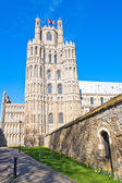 Ely cathedral — Stock Photo