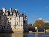 Chenonceau castle in fall , Loire valley , France — Stock Photo