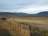 Patagonia in fall, north of Puerto Natales — Stock Photo