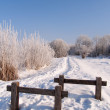 Footpath in winter - Stock Photo