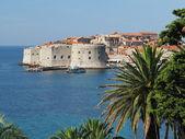Dubrovnik, chorwacja — Zdjęcie stockowe