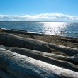 Pacific Northwest ocean beach south of Vancouver with driftwood — Stock Photo