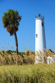 Lighthouse and a palm tree on a tropical island near Tampa Flori — Stock Photo
