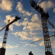 Wide angle view of a construction site with many cranes — Stock Photo