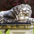 Lion statue at Victoria Buchard Public Gardens castle detail 19t — Stock Photo