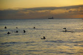 Surfers waiting for the last wave at sunset at Waikiki Beach Hon — Stock Photo