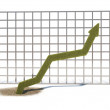 Graph up — Stock Photo