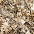 Sawdust wood into pile — Stock Photo #26141757