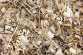 Sawdust wood into a pile — Stock Photo