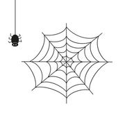 Spider. Illustration on white background. — Stock Vector