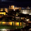 Monumental city of Cáceres of night — Stockfoto #12888563