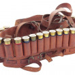 Cartridge belt — Stock Photo