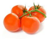 Cuatro tomates frescos — Foto de Stock