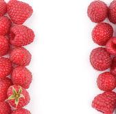 Frame of Raspberries — Stock Photo