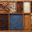 Stockfoto: Spicy Spices for Baking