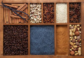 Spicy Spices for Baking — Stock Photo