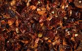 Dried Paprika Background — Stockfoto