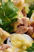 Delicious Salad closeup — Zdjęcie stockowe