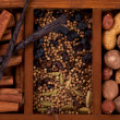Spices and Nuts - Stockfoto