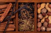 Especias y frutos secos — Foto de Stock