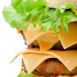 Double Hamburger — Stock Photo #18859869