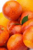 Blood Oranges — Stock Photo