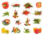Collection of Peppers — Stock Photo