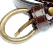 Foto Stock: Bronze Buckle