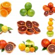 Foto de Stock  : Citrus Collection