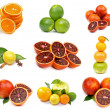 Citrus Collection — Stock fotografie #22856712
