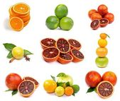 Citrus Collection — Stok fotoğraf