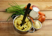 Preparing Vegetables Puree — Stockfoto
